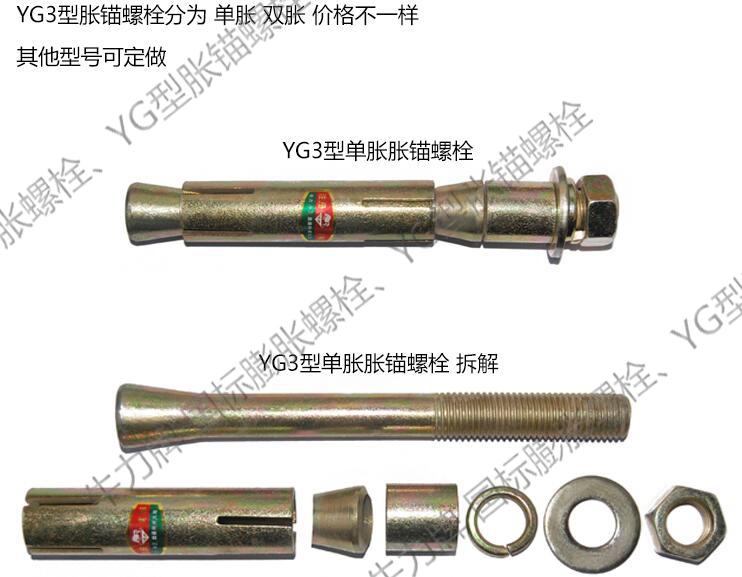YG3-3.jpg